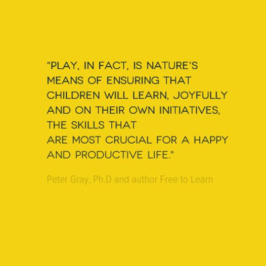 Image result for learning through play quotes