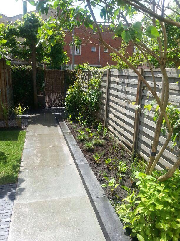 Tuinpad van Schellevis betontegels - Ouwerling Hoveniers