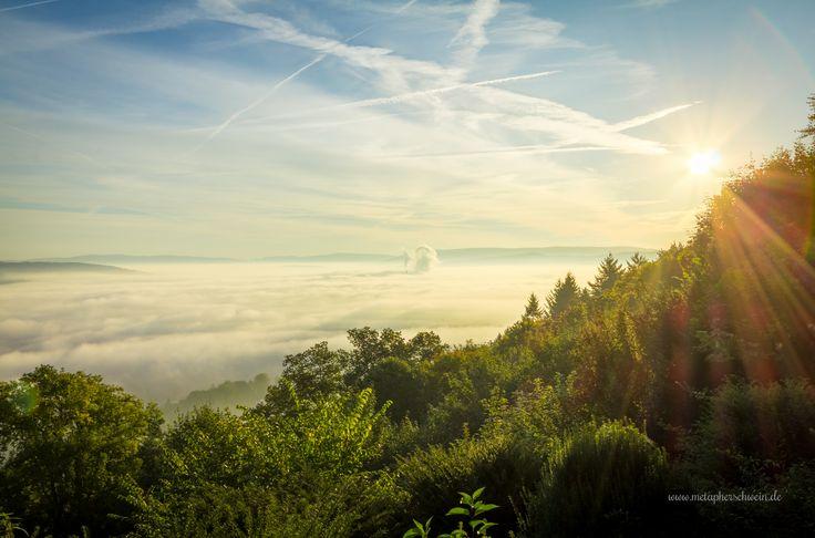 Blick auf #Hameln im #Weserbergland in #Niedersachsen am 2. Oktober  #Klüt #Nebel #Herbst  Gesehen von www.metapherschwein.de