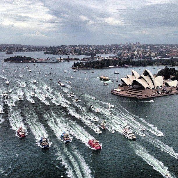 Australia Day Ferry Race.