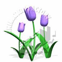 Purple Tulips Nodding in Breeze Animated Clipart