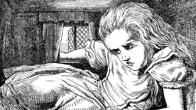 Alice in Wonderland novel | Illustrations from Alice in Wonderland, by Sir John Tenniel. Source ...