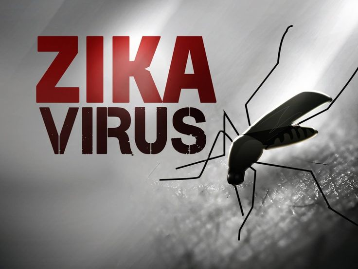 Know About Zika Virus?  and How You Can Avoid The Disease? Here is the answer!