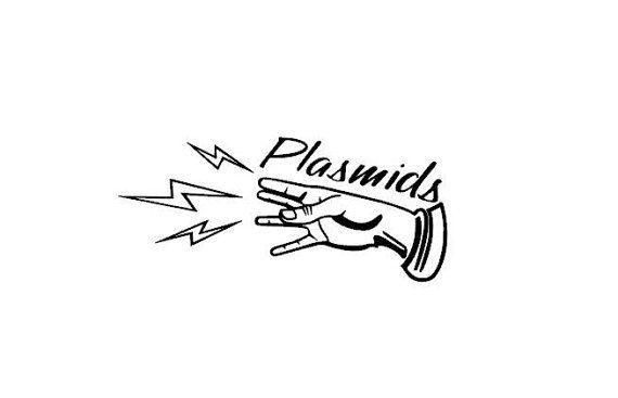 Bioshock Plasmids Vinyl Decal by TacoBuseyVinylShoppe on Etsy