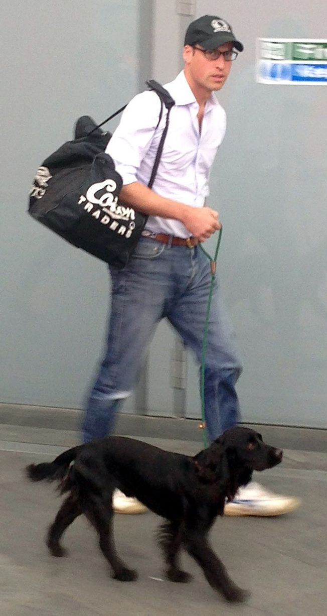 Prince William & Lupo at King's Cross Station