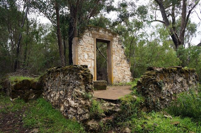 12.4km (loop) Ghost House Walk Trail (Yanchep National Park) ~ The Long Way's Better