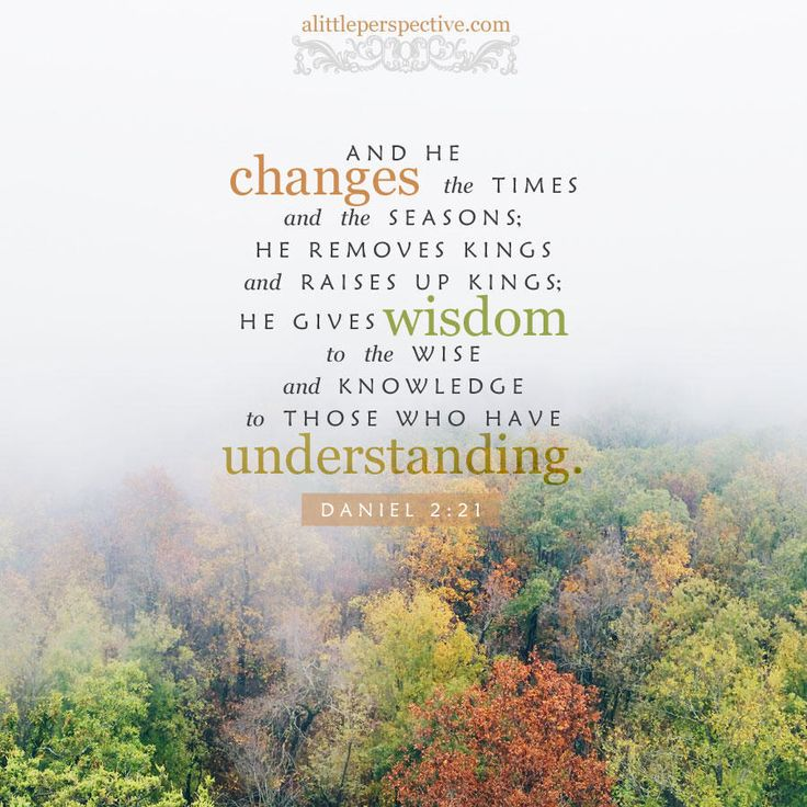 And He changes the times and the seasons: He removes kings and raises up kings; He gives wisdom to the wise, and knowledge to those who have understanding. Daniel 2:21 | scripture pictures at alittleperspective.com