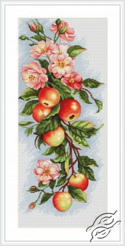Composition with Apple - Cross Stitch Kits by Luca-S - B211