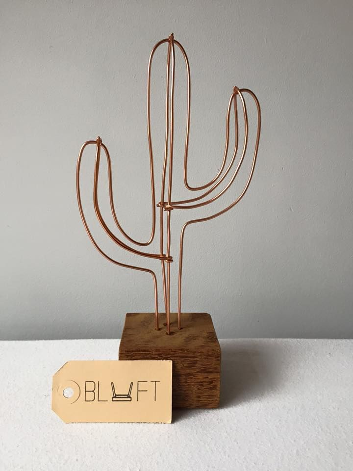 Draad cactus