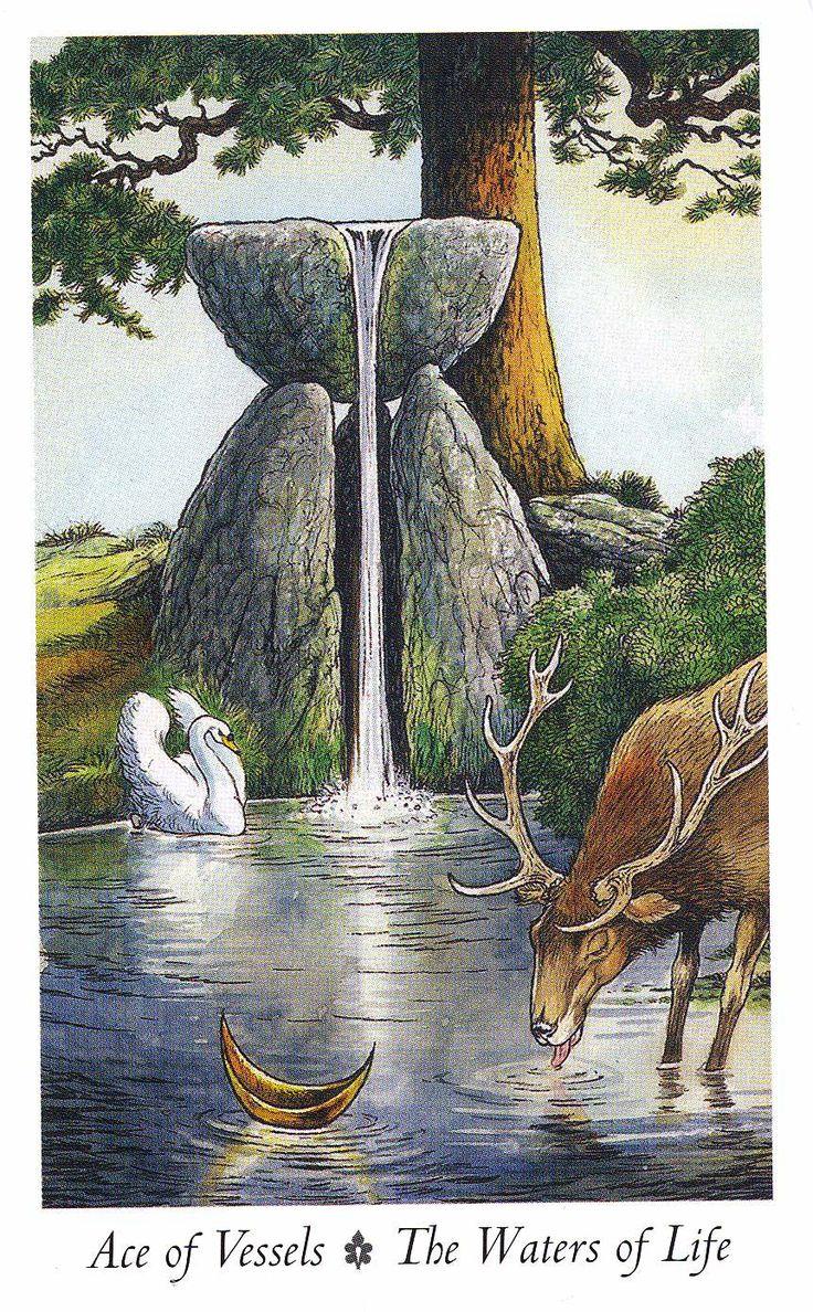 """Ace of Vessels - Water of Life -   - """"Wildwood Tarot"""" Illustrator Will Worthington, and Mark Ryan, John Matthews (Authors)."""