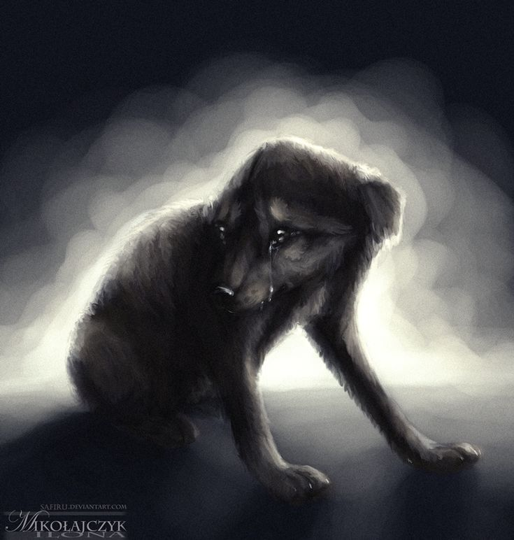 Depressed wolf drawing - photo#36