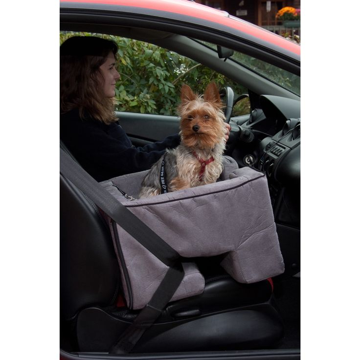 Pet Gear Car Booster Seat, #PG1122