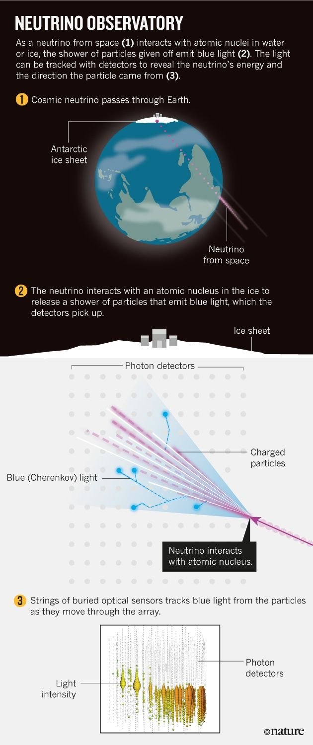Neutrino Observatory | As a neutrino from space (1) interacts with atomic nuclei in water or ice, the shower of particles given off emit blue light (2). The light can be tracekd with detector to reveal the neutrino's energy and the direction the particle came from (3).
