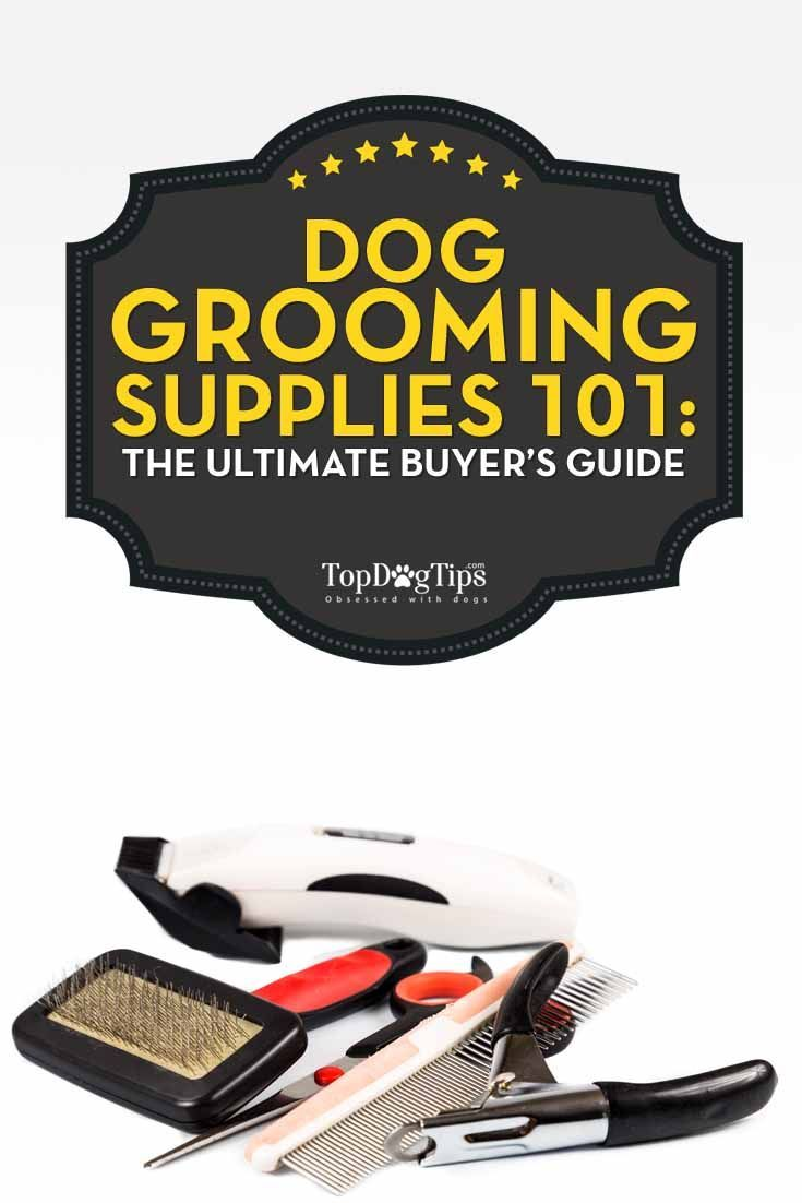 Dog Grooming Supplies 101: The Ultimate Buyers' Guide. So, you've decided you want to groom your dog at home. It can be a fun experience for you and your dog. It's a great way to bond and also useful for making sure that your dog's in tip-top shape. Getting started can be a little intimidating though, especially because there are so many dog grooming supplies to choose from. #dogs #grooming #dogsupplies #pets #homebusinesssupplies,