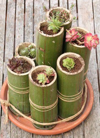 Decorazioni fai da te con il bambù