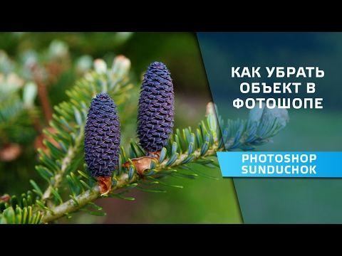 Как убрать объект в фотошопе   Удаляем объект с фотографии - YouTube