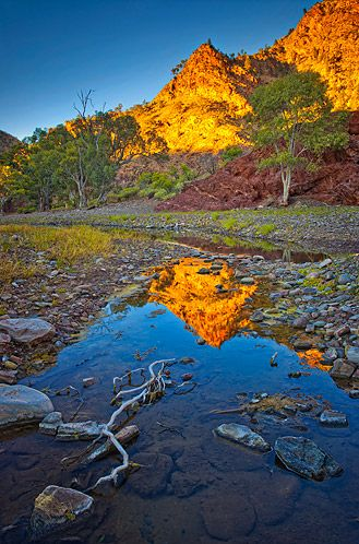 Reflections at Brachina Gorge, Flinders Ranges - South Australia. Photo: Chris Morrison.