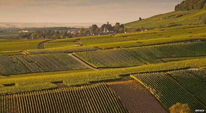 Come+visitare+la+Champagne+anche+se+non+si+è+esperti+di+vino