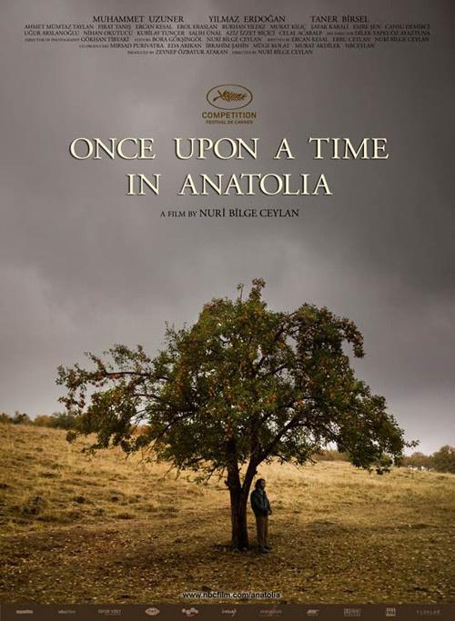 Nel cuore delle steppe dell'Anatolia, un assassino cerca di guidare una squadra della polizia verso il luogo dove ha sepolto la sua vittima. Nel corso di questo viaggio emergono gli indizi di cosa è davvero accaduto.