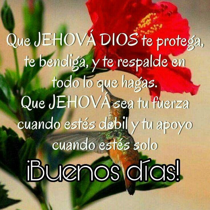 Pin von Alejandra Caffaro auf Jehová es todo | Pinterest