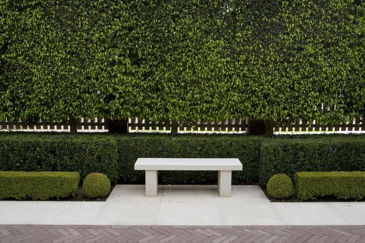 Love the Pleached Hedge and lower hedge - Paul Bangay