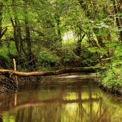 Drienčanský kras #nature #príroda #cestovanie #slovensko #slovakia