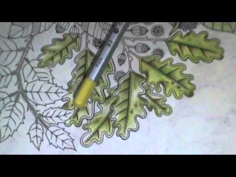 93 Best Coloring Tutorials Images On Pinterest
