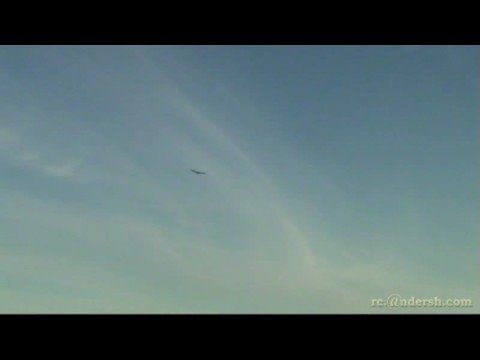 eagle on steroides. NORWAY - YouTube