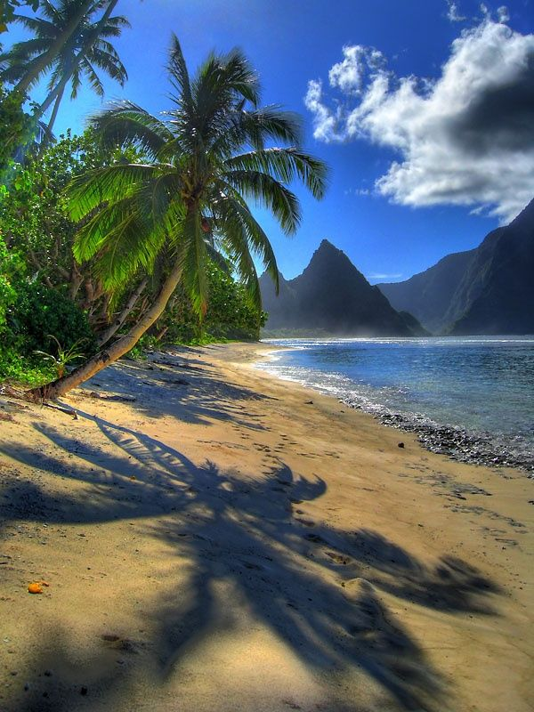 American Samoa National Park in the South Pacific.