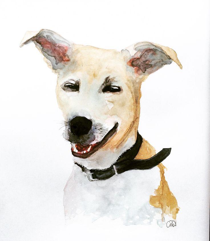 Sushi, someone's dog I painted