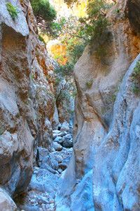 Hiking and walking options on Crete