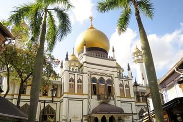 Uncover the Gems of Kampong Glam: The Seat of Malay Royalty in Singapore | Viator