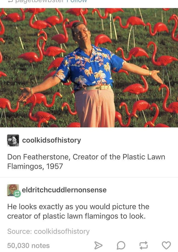 Don Featherstone - the inventor of plastic lawn flamingos. It seemed like fate, his name, his style, his appearance. Just seems very fitting