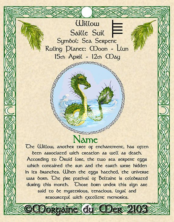 Celtic Zodiac Signs Druid Tree Lore Lunar Astrology 11inch x 14inch Fine Art Print April - August Birthdays People have been marking the passage of time by the phases of the moon for millennia. Although it is impossible to say for certain because the lore and traditions were not