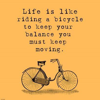 Veruca Salt Orange Einstein Bicycle Quote Orange Einstein Bicycle Quote