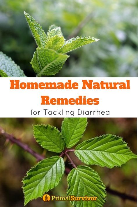Natural homemdae remedies for diarrhea and upset stomach. Because of how dangerous diarrhea and stomach flu is, it's vital to havemergency medicinesin your first aid kit. It is also important to know how to make them yourself in an disaster situation. We show you how to make DIY Tinctures, Homemade rehydration solutions, soothing herbs, natural antibiotics and homemade prebiotics. #naturalremedies #fordiarrhea #upsetstomach #stomachflu #forkids #DIYtinctures #rehydrationsolutions