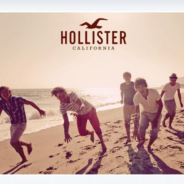 hollister and co