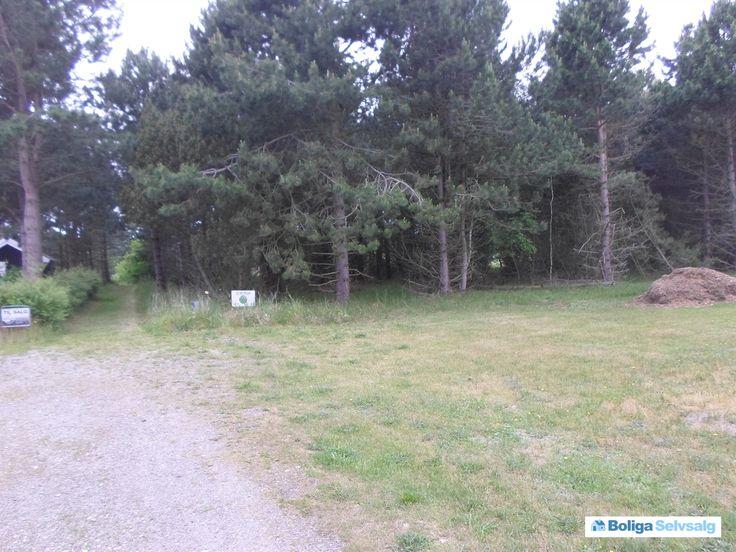 Agerhønevej 14, 4970 Rødby - Attraktiv fritidsgrund kun 700 m fra vandet #fritidsgrund #grund #grundsalg #rødby #selvsalg #boligsalg #boligdk