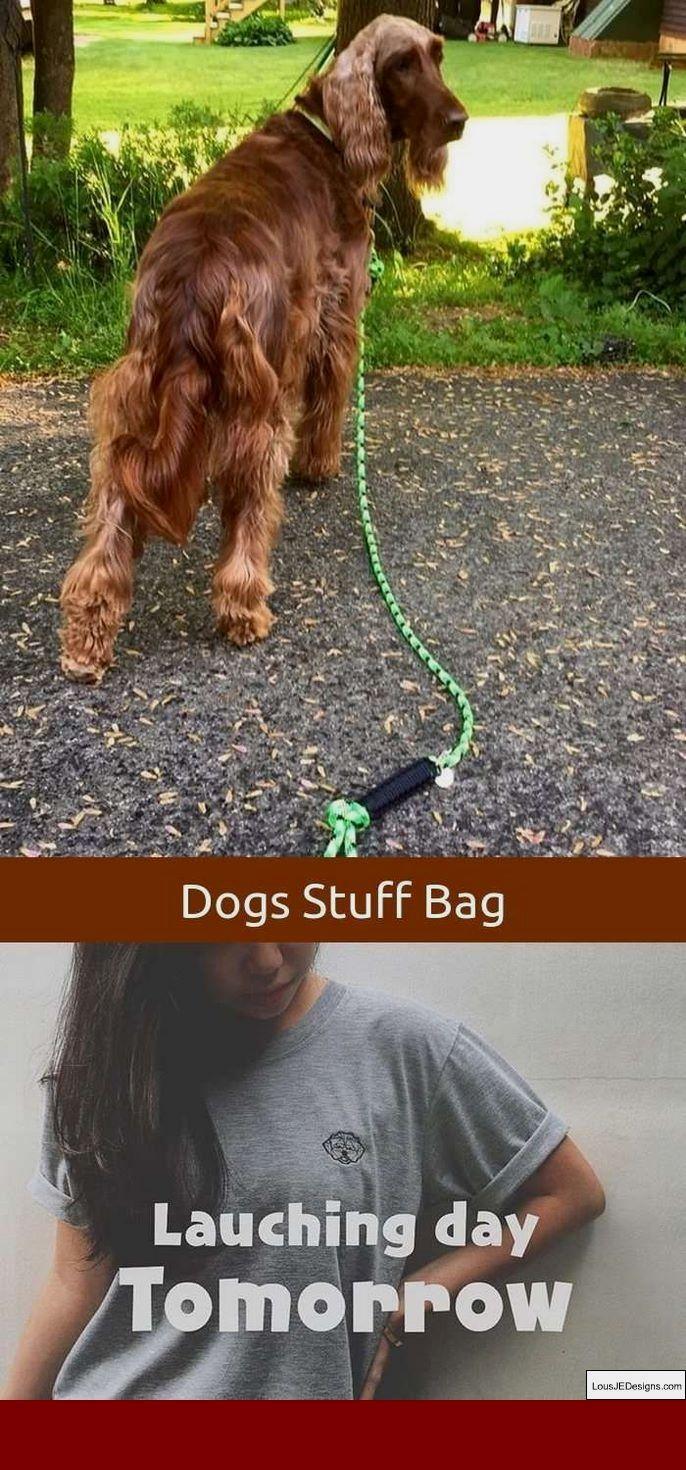 German Shepherd Dog Training Tips In Hindi Pdf And Pics Of Ways To