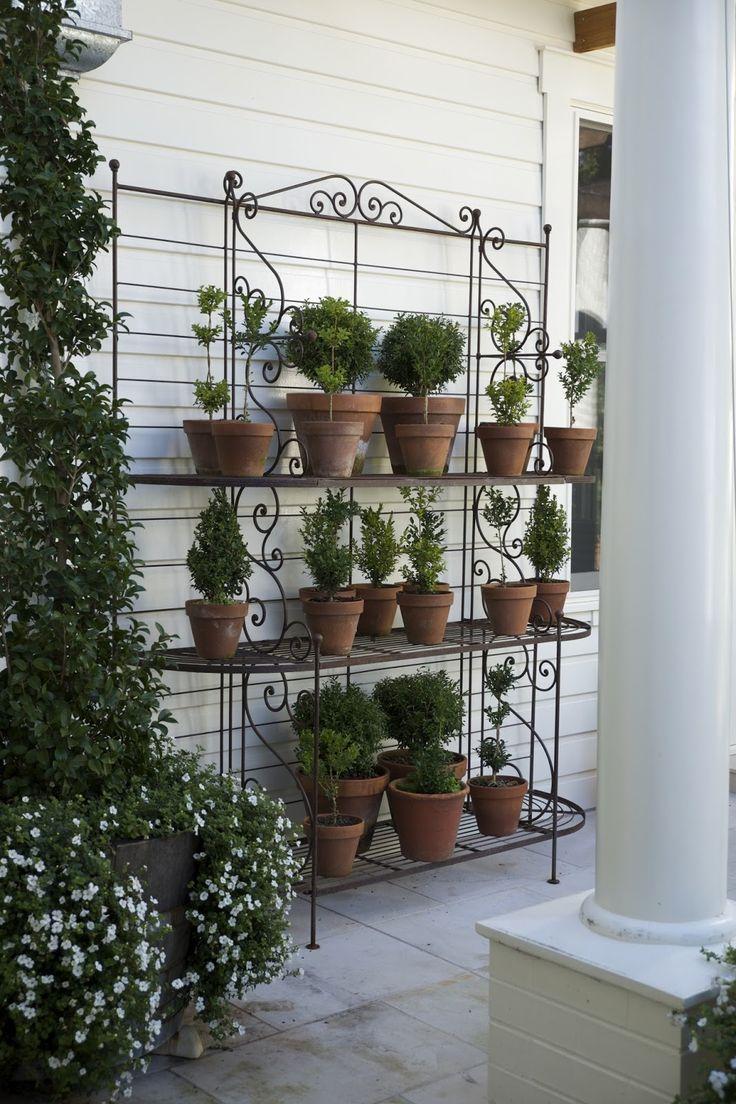 106213 best great gardens u0026 ideas images on pinterest gardening