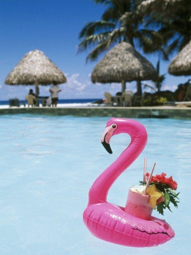 Pływające flamingi z miejscem na napój