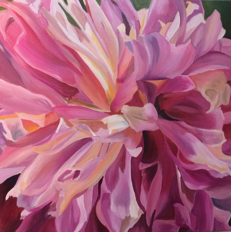 'Peony' Emma Targett - acrylic on canvas 50x50cm www.emmatargett.com