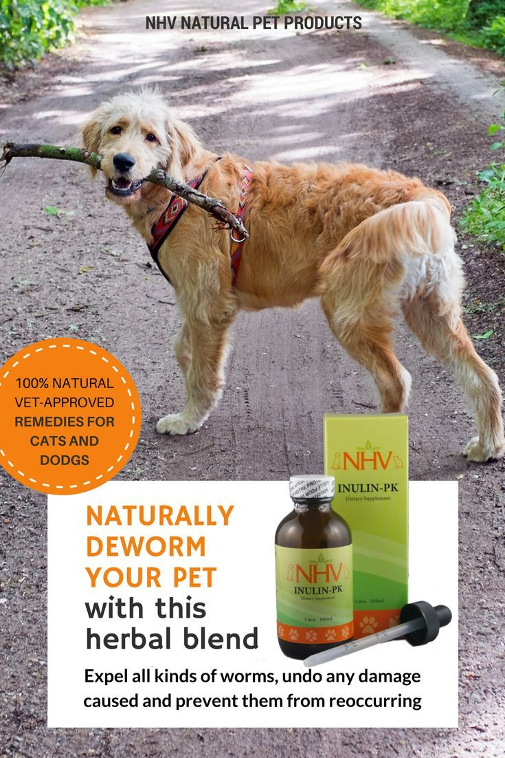 Naturally Deworm Your Cat Or Dog With This Herbal Blend Inulin Pk From Nhv Natural Pet Products It Helps Expel Natural Pet Remedies Dog Remedies Natural Pet