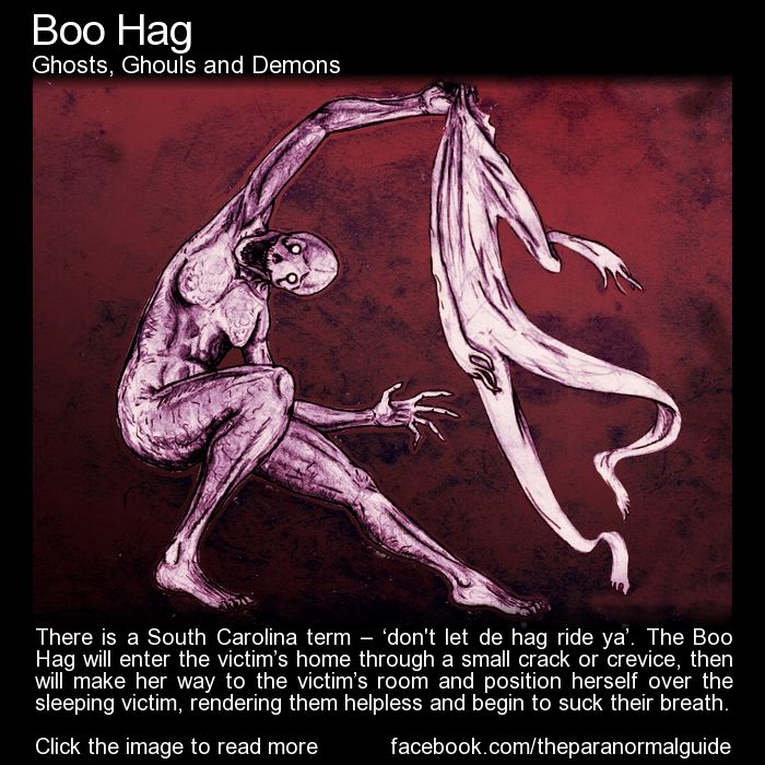 Boo Hag. The Boo Hag is an interesting interpretation of sleep paralysis. Much more gory than a few others out there... I think this may be my favorite. http://www.theparanormalguide.com/blog/boo-hag