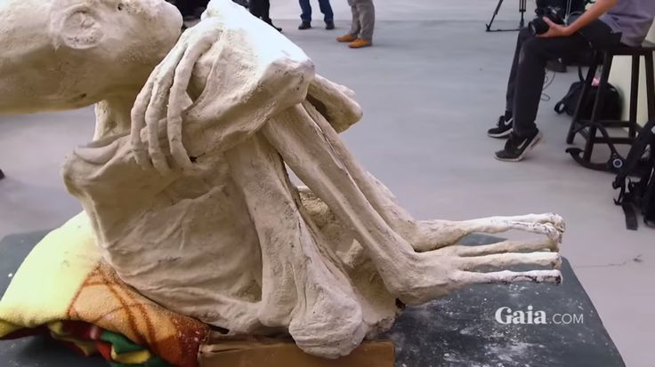 A stunning new discovery has been made in Nazca, Peru that some are speculating could be physical, tangible proof of alien life on Earth. (scroll down for video) Although extensive research must be done before conclusions are made, the unearthed mummy looks like something you've never seen before—at least, not outside of a sci-fi movie: 3 fingers, …
