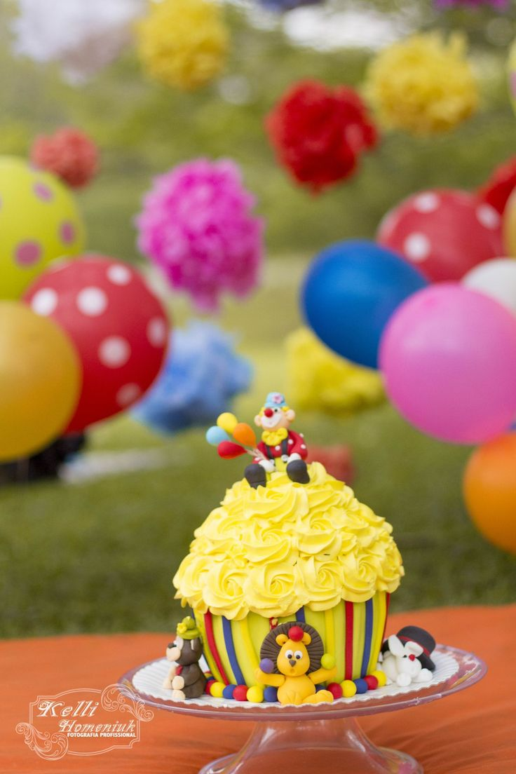 O Smash The Cake do Pietro foi o mais colorido de todos os tempos. Com o tema de circo não seria pra menos. Fiz o acompanhamento fotográfico do Pietro e esta foi a a ultima sessão de acompanhamento…