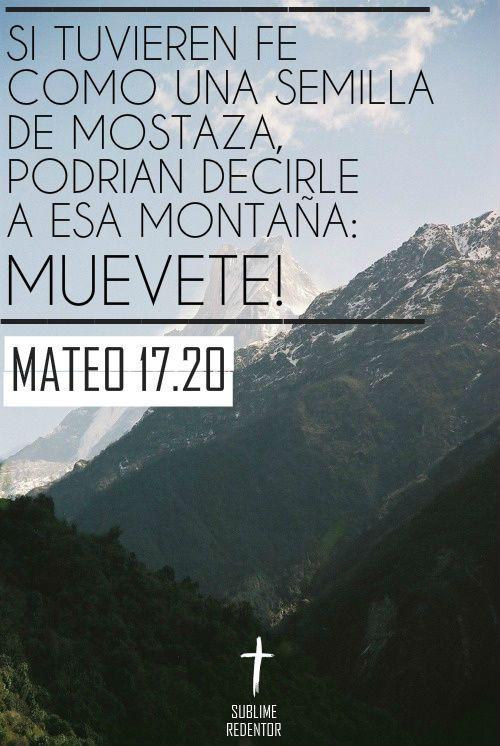 """—Ustedes no tienen la fe suficiente —les dijo Jesús—. Les digo la verdad, si tuvieran fe, aunque fuera tan pequeña como una semilla de mostaza, podrían decirle a esta montaña: """"Muévete de aquí hasta allá"""", y la montaña se movería. Nada sería..."""