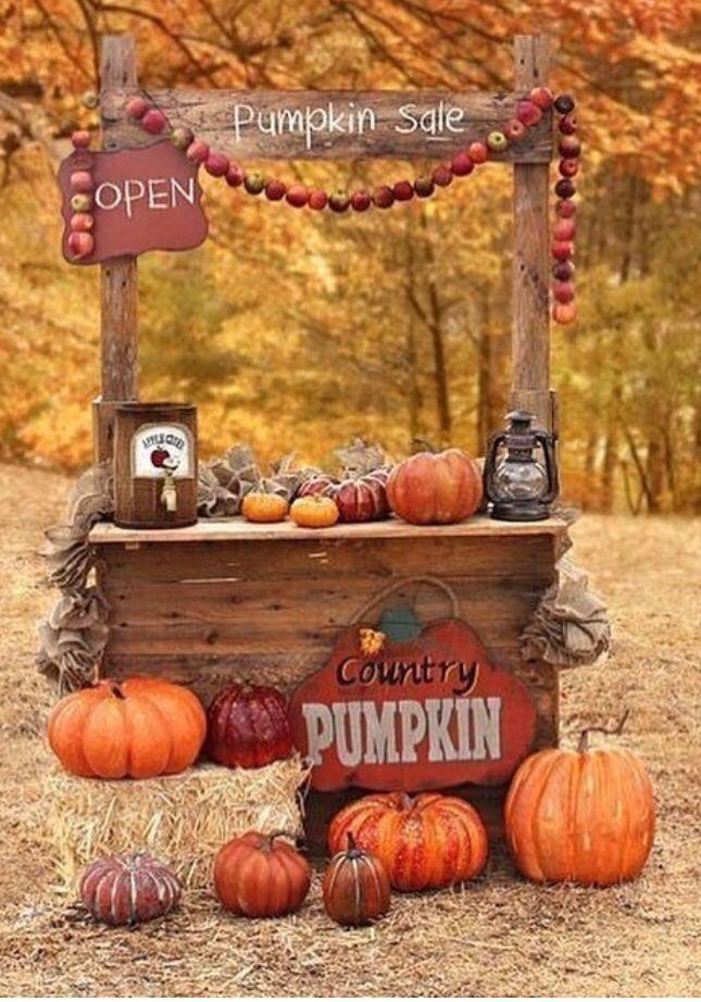 Autumn Falls 4