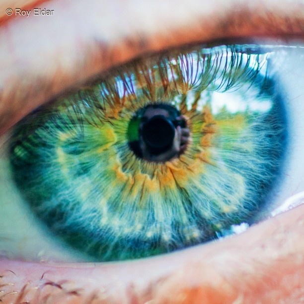 eye iris & camera shooting  via Instagram @Rotem Eldar