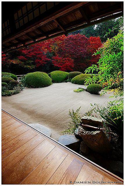 """Der Kies symbolisiert das Meer, Felsen und Formschnitt-Sträucher die Inseln. Soviel wissen wir Europäer vom chinesischen oder japanischen Garten. Das dürfte eher nicht reichen, weshalb ich solche """"Zen-Gärten"""" nicht gestalte. Dieser sieht trotzdem toll aus. Im Hintergrund Rot-Ahorn (http://galasearch.de/plants/10759-acer-rubrum)…"""